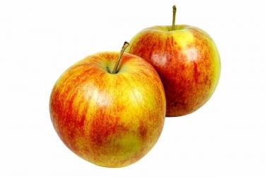 Apfel Jonagold 1 Stück