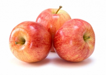 Apfel Gala 1 Stück