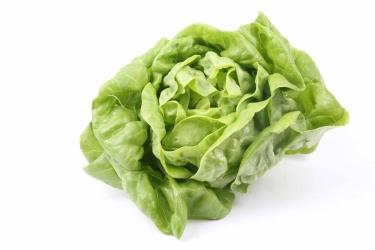 Kopfsalat 1 Stück