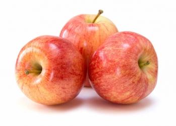Apfel Bio 1 Stück