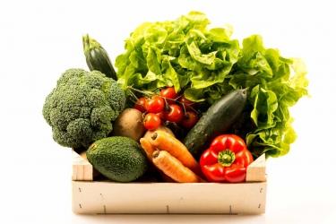 Querbeet Gemüse BIO Paket - klein