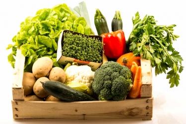 Querbeet Gemüse BIO Paket - groß