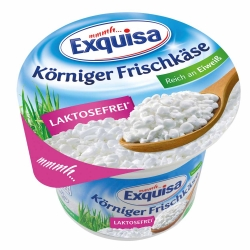 Exquisa Körniger Frischkäse 175g